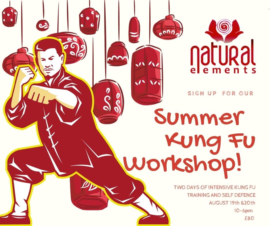 Natural ElementsSummer Kung Fu Workshop
